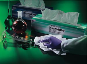 HALYARD PURPLE NITRILE™ EXAM GLOVES : 55091 CS