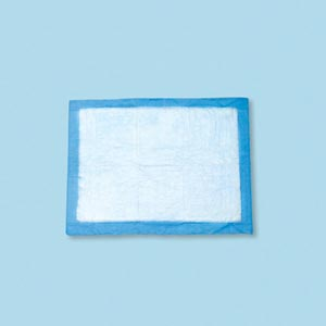 TIDI ABSORBENT UNDERPADS : 16652 CS                   $40.05 Stocked