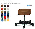 PRO ADVANTAGE CONTEMPORARY-STYLE STOOLS P272138 Stool, Pneumatic, Slate Nylon Base Customizable with 23 standard colors